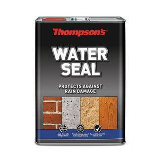 Picture of Thompsons Waterseal 5Lt
